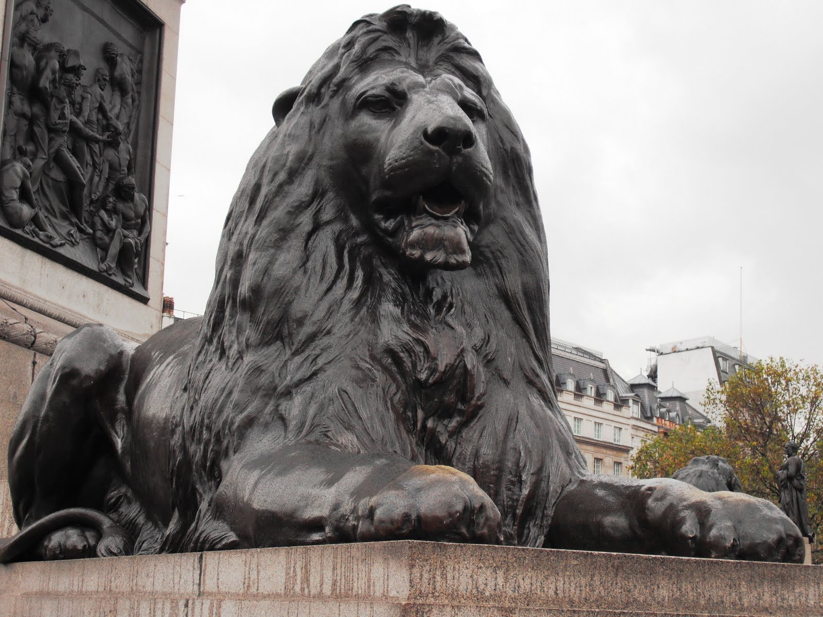 Dorchester Lion